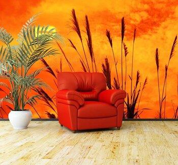 Фотообои на стену photo-15040949