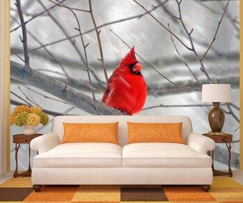 Фотообои на стену Красная птица