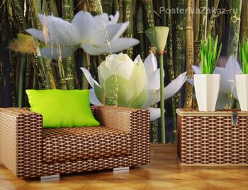 Фотообои на стену Балерина с орхидеями