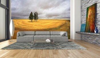 Фотообои на стену Ранняя осень