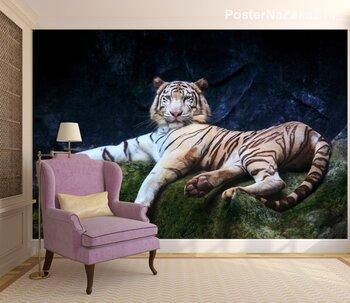 Фотообои Отдыхающий тигр