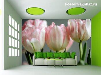 Фотообои на стену Белый тюльпан