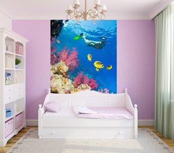 Фотообои на стену fish-05011016