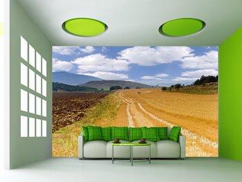 Фотообои на стену photo-10090967