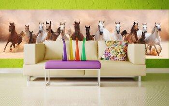 Фотообои на стену Две бегущие лошади