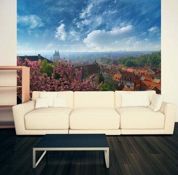 Фотообои на стену Летний апельсин среди яблок