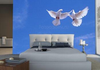 Фотообои Два белых голубя в синем небе