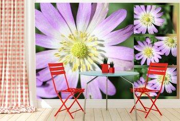 Фотообои Луговые цветы
