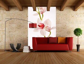 Фотообои на стену Орхидея на фоне воды