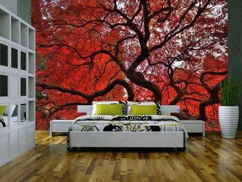 Фотообои на стену photo-27110939