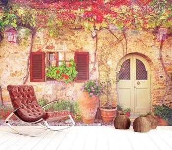 Фотообои Фасад и виноградная лоза