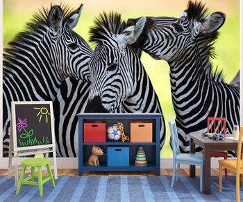 Фотообои на стену Изображение двух жирафов, носорога и бабочек на фоне оранжевого солнца