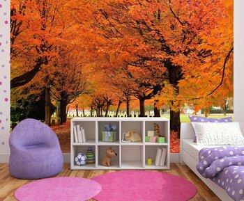 Фотообои на стену photo-01120984