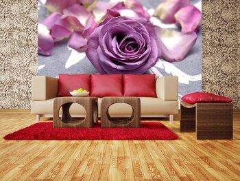 Фотообои на стену photo-15110942