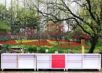 Фотообои на стену Ботанический сад на острове Ванкувер