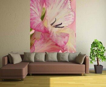 Фотообои на стену Красивый розовый гладиолус