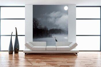 Фотообои на стену photo-19070925