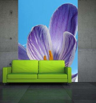 Фотообои на стену Поле с цветами