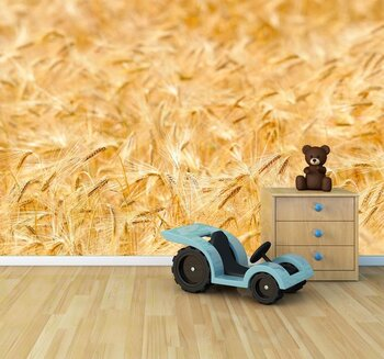 Фотообои на стену Огромное пшеничное поле