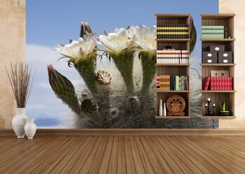Фотообои на стену Большой круглый кактус в ботаническом к саду