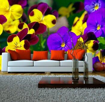 Фотообои Весеннее разноцветье