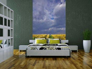Фотообои на стену Мостик между пальмами