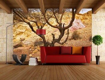 Фотообои на стену Огромное поле после уборки урожая