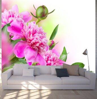 Фотообои на стену rose-06011019