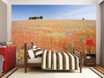 Фотообои на стену Пшеничное поле