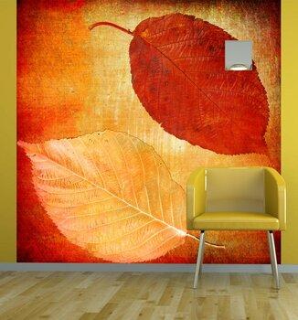 Фотообои на стену photo-06070963
