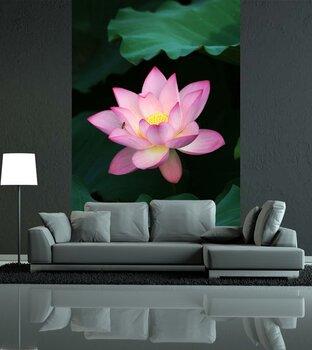 Фотообои на стену Роза в вазе