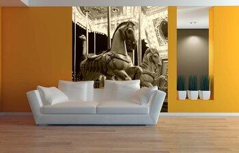 Фотообои на стену Карусель