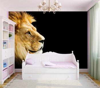 Фотообои на стену lioness
