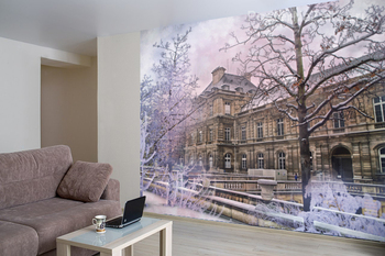 Фотообои Зимняя Франция