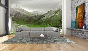 Фотообои на стену Понорама