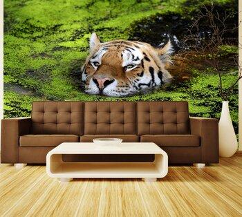 Фотообои Тигр