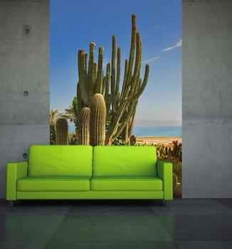 Фотообои на стену Желтые и зеленые кактусы на фоне неба и облаков
