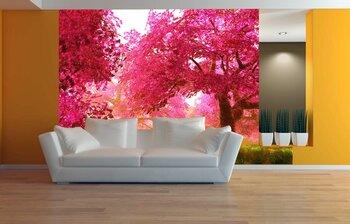 Фотообои Таинственные вишневые деревья