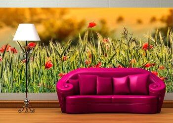 Фотообои на стену red poppies