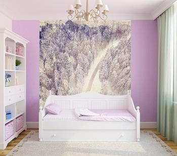 Фотообои на стену Березы зимой