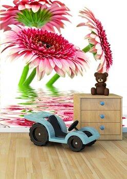 Фотообои на стену flower nature garden botany daisy bloom pot
