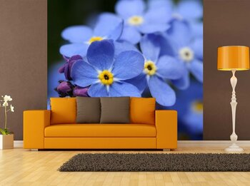 Фотообои на стену Летний цветок один в поле