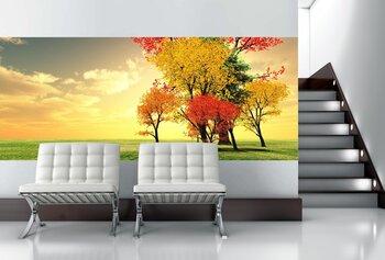 Фотообои на стену photo-23110983