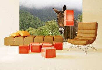 Фотообои на стену Лошадь в степи