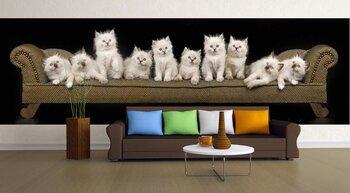 Фотообои Котята на диване