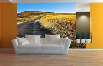 Фотообои на стену Тропинка в осеннем парке