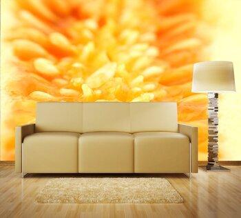 Фотообои на стену photo-26060945