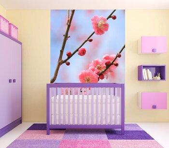 Фотообои Цветущая ветка сакуры