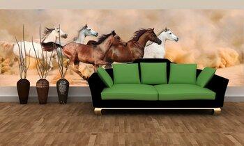 Фотообои Табун лошадей