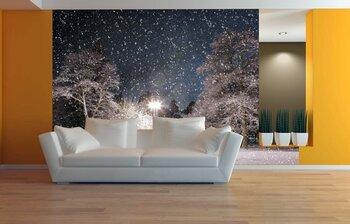 Фотообои на стену photo-06040724